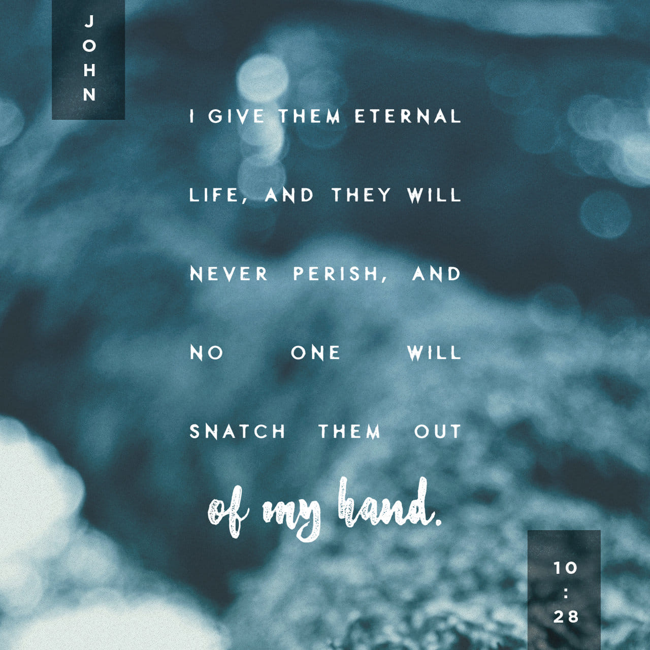 John 10:28 And I give unto them eternal life