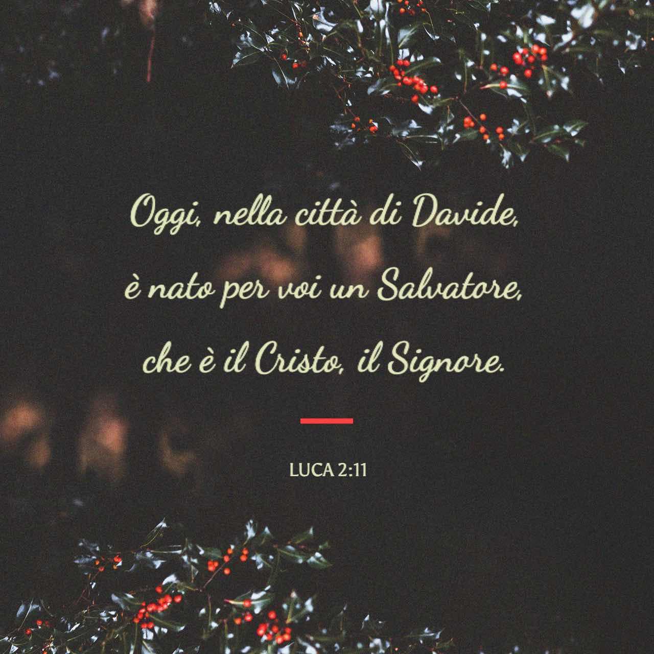 Oggi, nella città di Davide, è nato per voi un Salvatore. - Luca 2:11 - Immagine Versetto