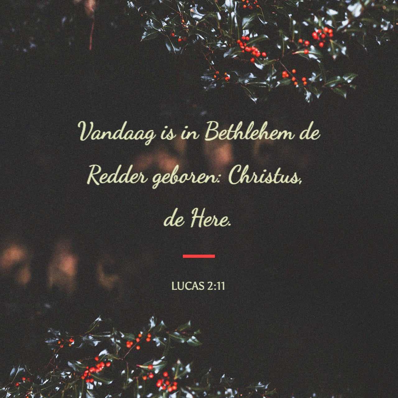 Vandaag is in Bethlehem de Redder geboren: Christus, de Here. - Lucas 2:11 - Versafbeelding