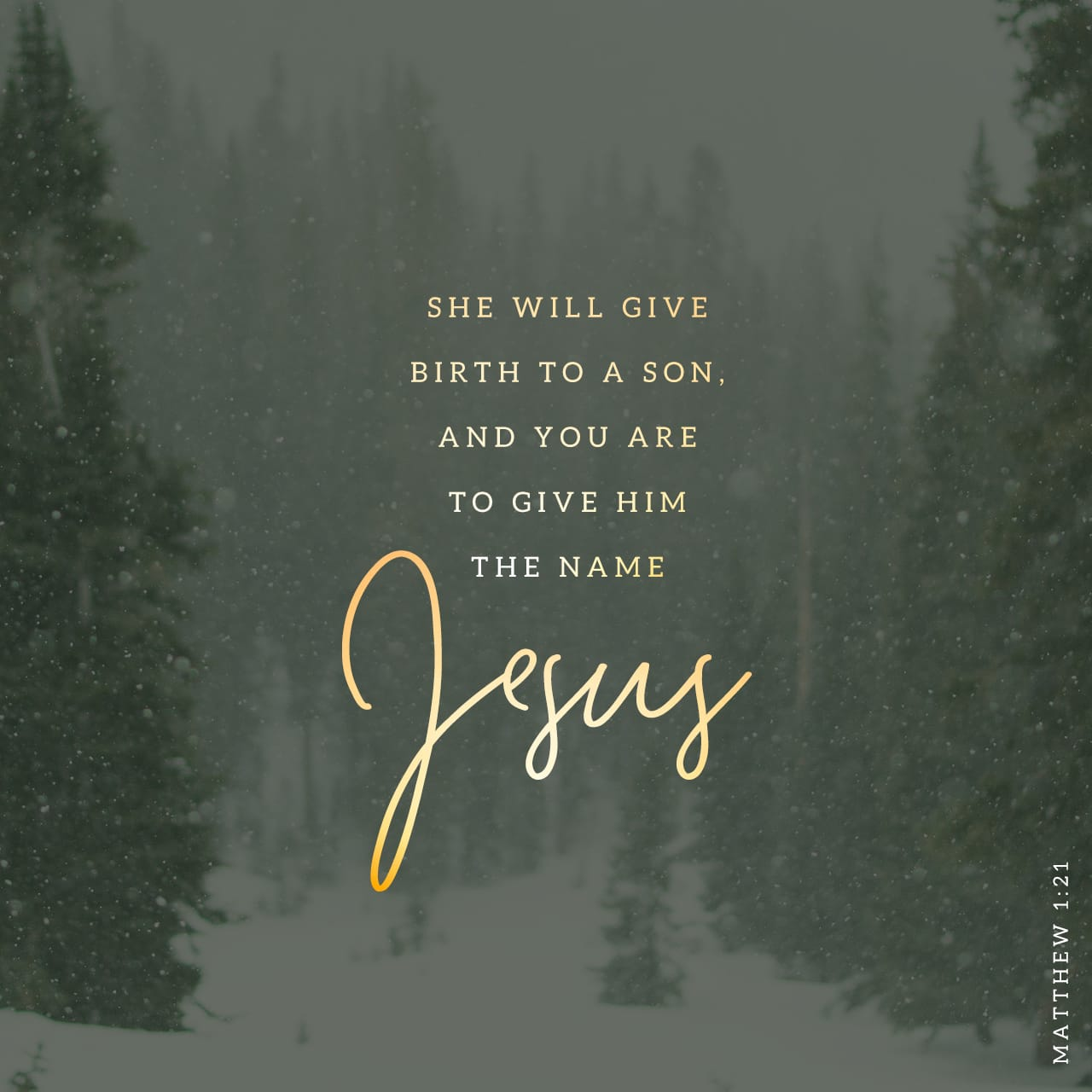 Matthew 1:21 She will give birth to a son, and you are to give him the name Jesus, because he will save his people from their sins."