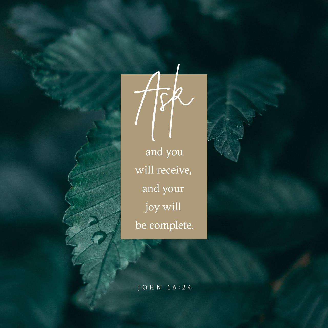 Vangelo secondo Giovanni 16:24 Fino ad ora non avete chiesto nulla nel mio nome; chiedete e riceverete, affinché la vostra gioia sia completa. | Nuova Riveduta 1994 (NR94)