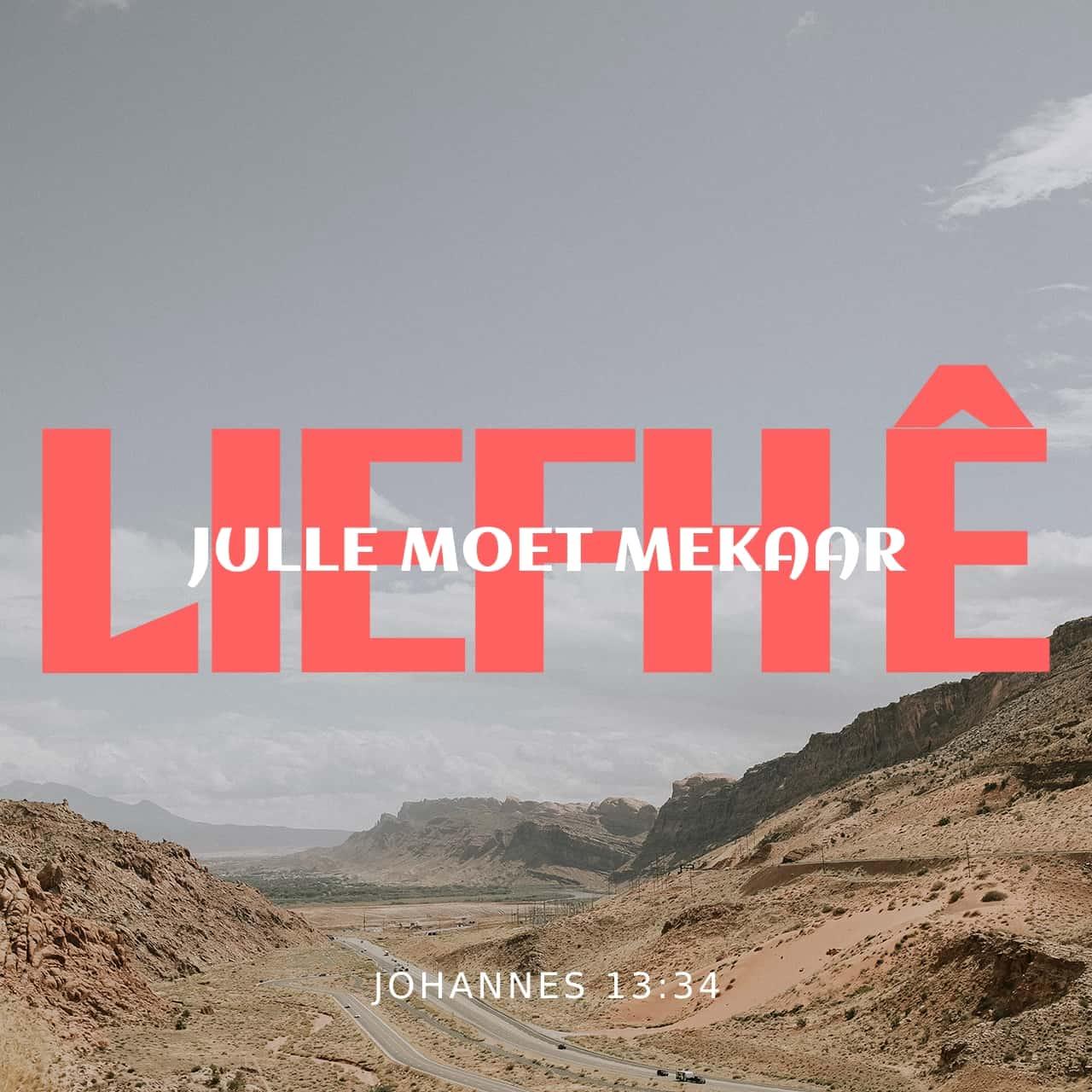 Wees lief vir mekaar - Johannes 13:34 - Versbeeld