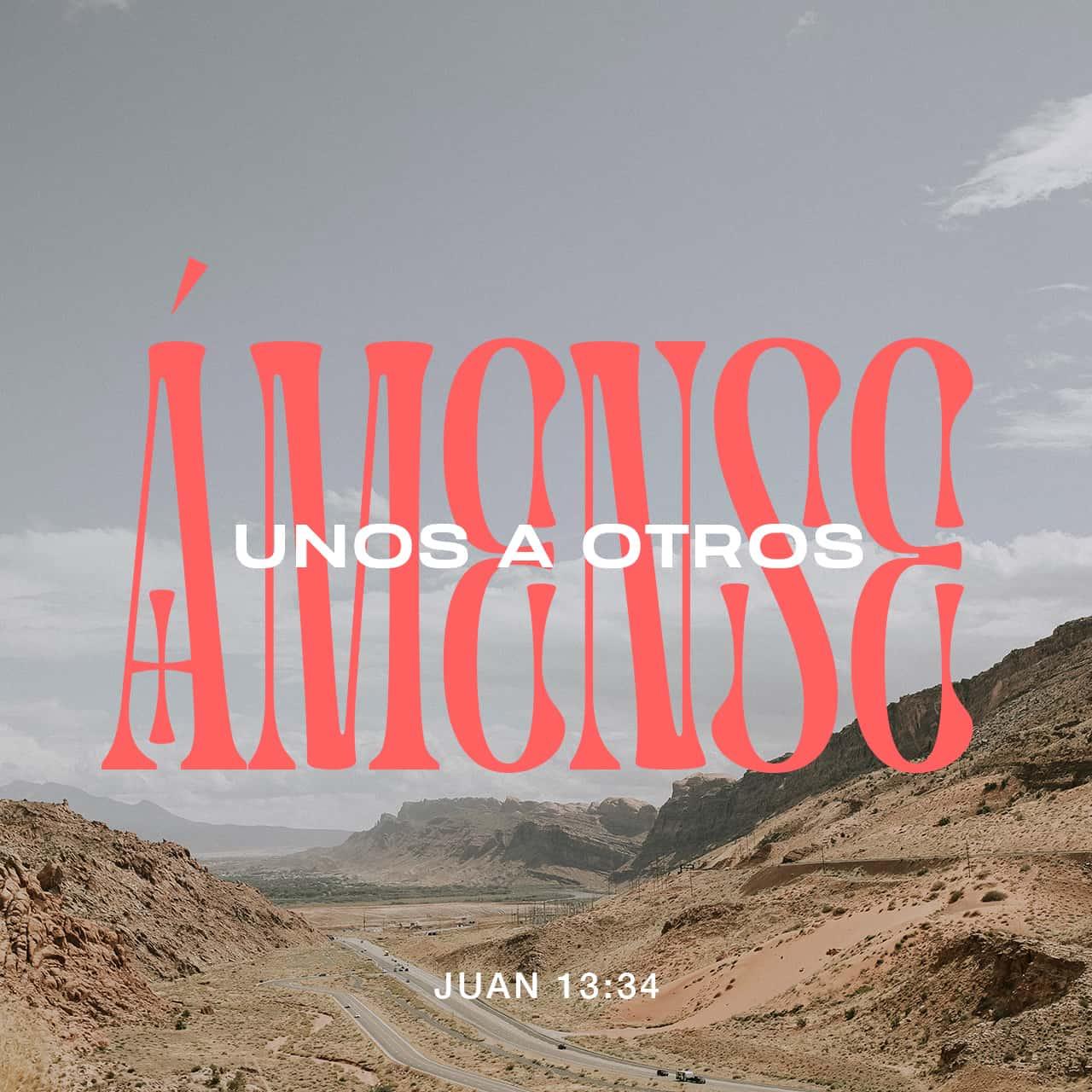 Ámense los unos a los otros - Juan 13:34 - Imagen de Versículo