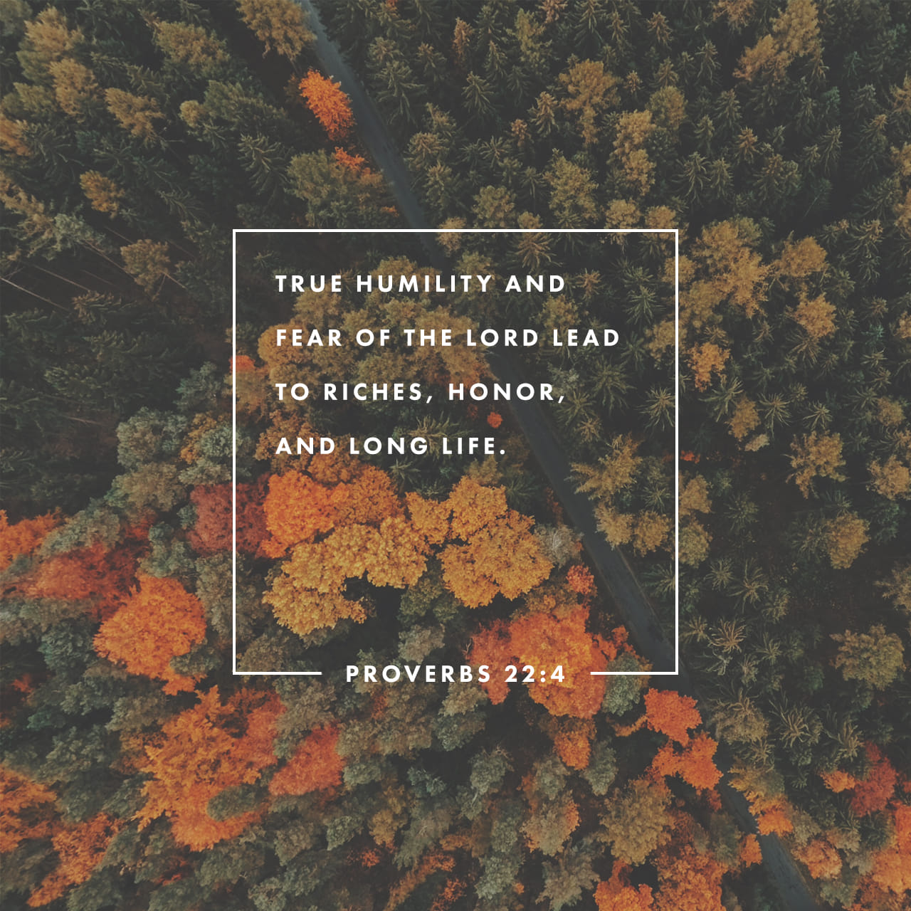 Proverbs 22:4 By humility and the fear of the LORD are riches, and honour, and life. | King James Version (KJV)