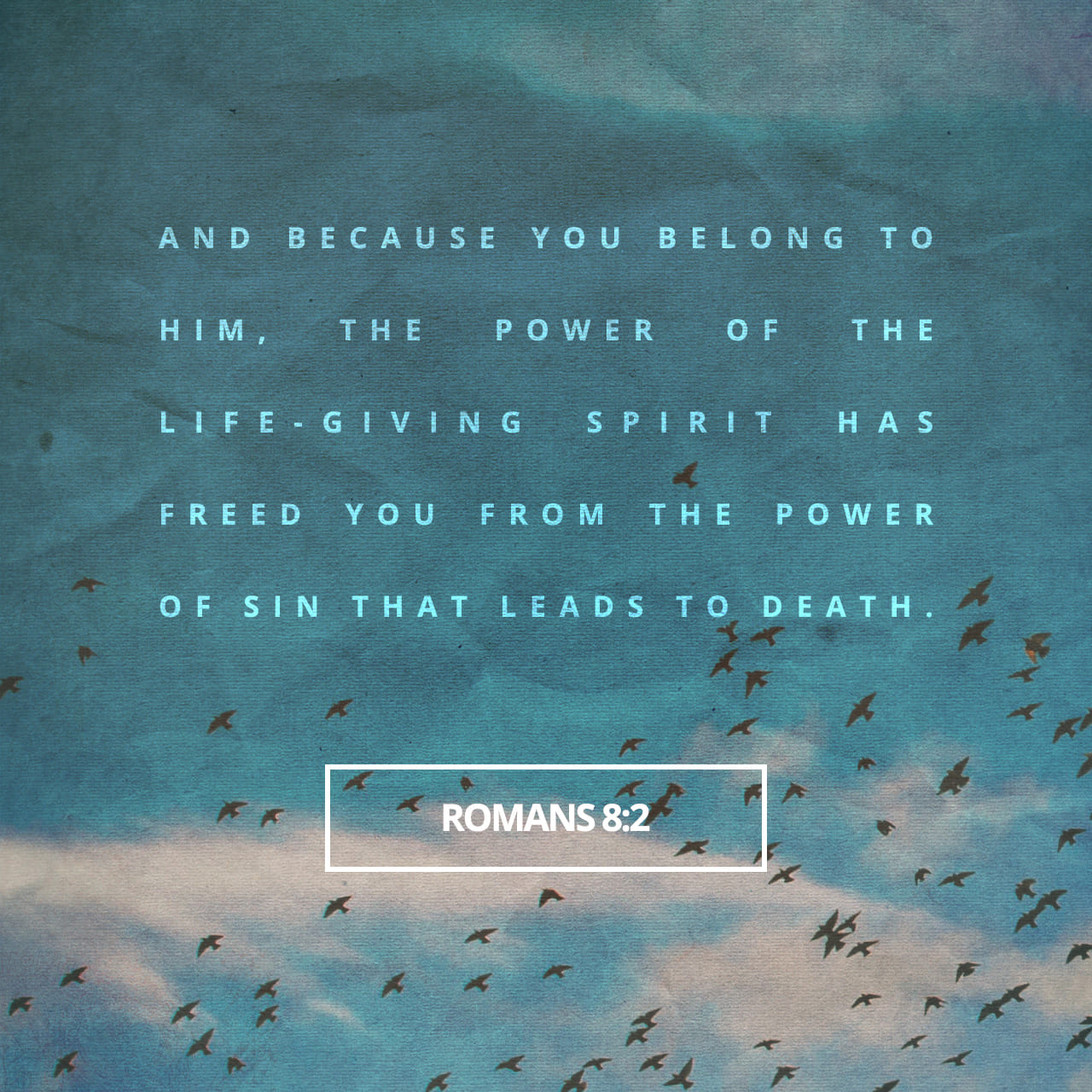 Romans 8:2 For the law of the Spirit of life in Christ Jesus hath made me free from the law of sin and death. | King James Version (KJV)