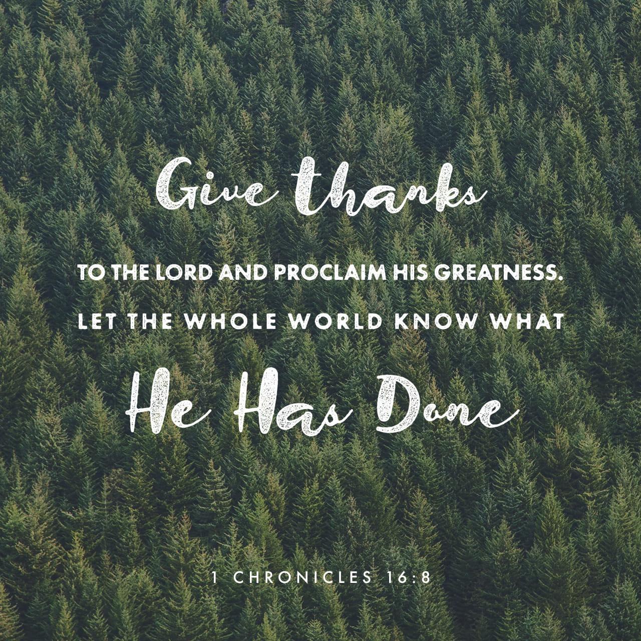 1Crônicas 16:8 Agradeçam a Deus, o SENHOR, anunciem a sua grandeza e contem às nações as coisas que ele fez. | Nova Tradução na Linguagem de Hoje (NTLH)