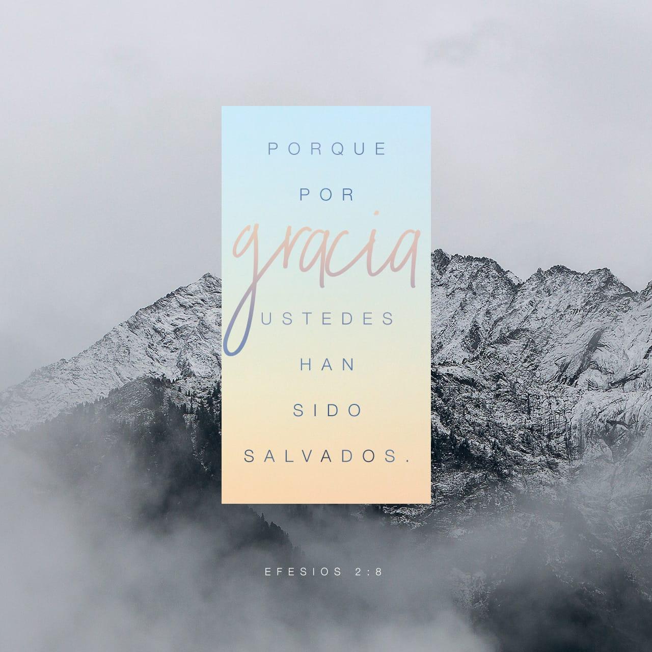 Matrimonio Biblia Paralela : Efesios 2:8 9 porque por gracia sois salvos por medio de la fe; y