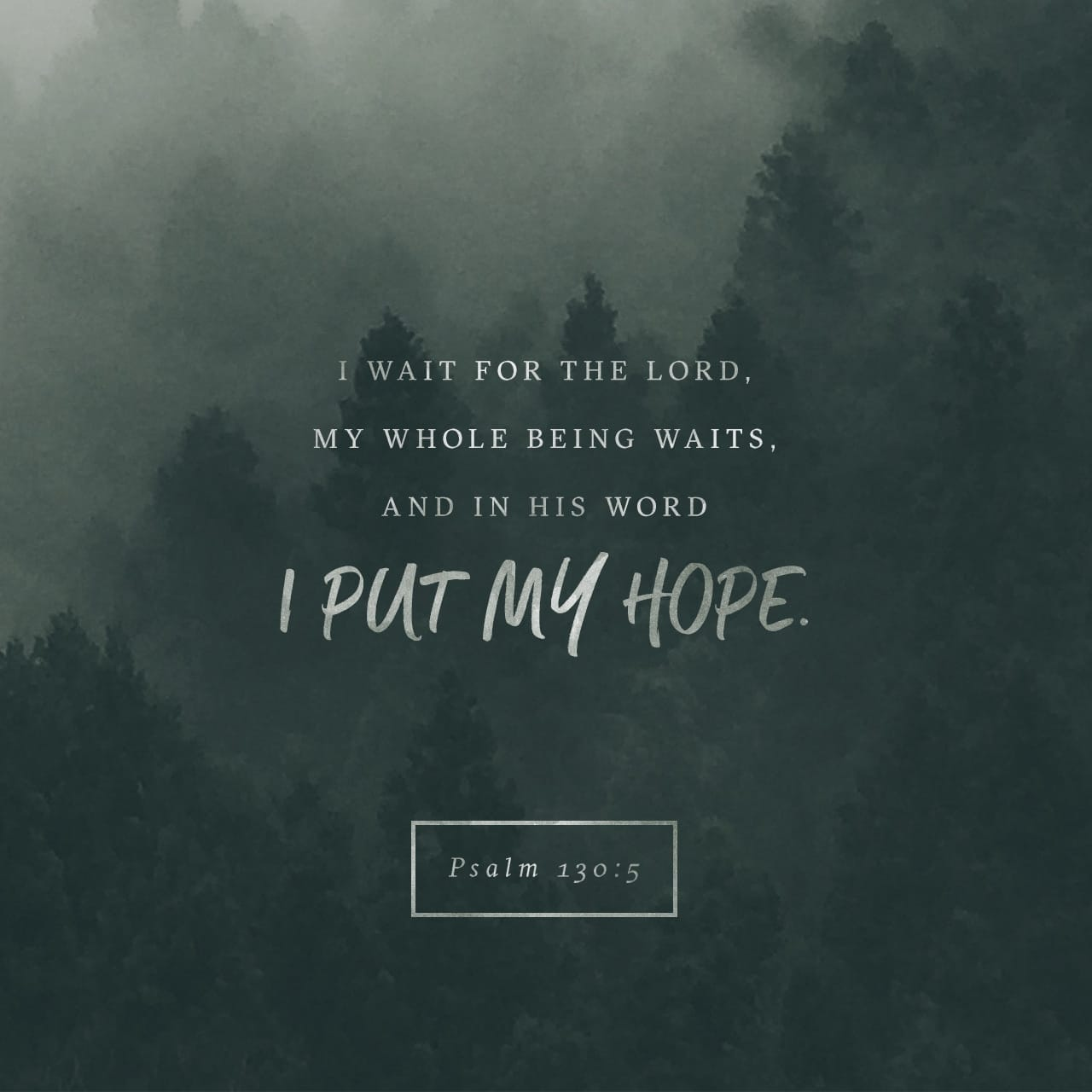 Psalms 130:5 I wait for the LORD, my soul doth wait, and in his word do I hope. | King James Version (KJV)