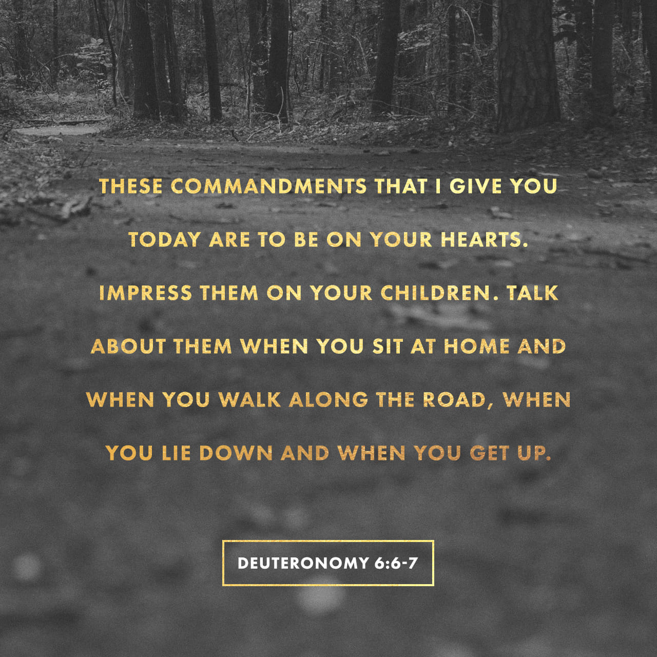 Deuteronomy 6:6-7 And you must commit yourselves wholeheartedly to these commands that I am giving you today. Repeat them again and again to your children. Talk about them when you are at home and when you are on the r | New Living Translation (NLT)