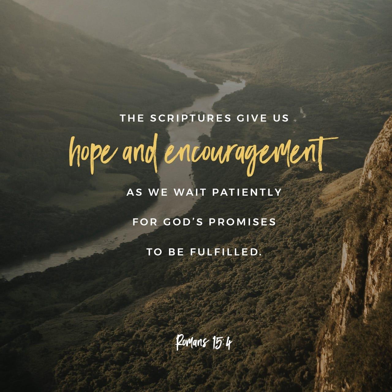Lettera ai Romani 15:4 Poiché tutto ciò che fu scritto nel passato, fu scritto per nostra istruzione, affinché mediante la pazienza e la consolazione che ci provengono dalle Scritture, conserviamo la speranza. | Nuova Riveduta 1994 (NR94)