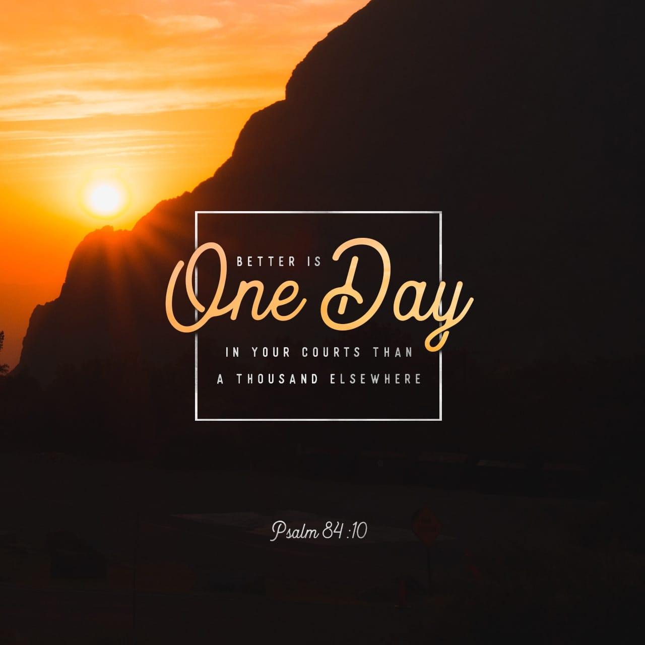 Salmo 84:10 Vale más pasar un día en tus atrios que mil fuera de ellos; prefiero cuidar la entrada de la casa de mi Dios que habitar entre los impíos. | Nueva Versión Internacional Español (NVI-E)