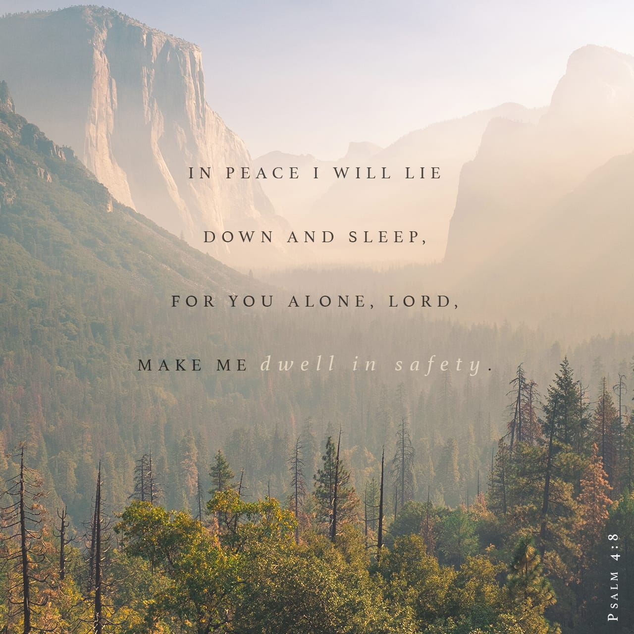 Psalms 4:8 I will both lay me down in peace, and sleep: for thou, LORD, only makest me dwell in safety. | King James Version (KJV)