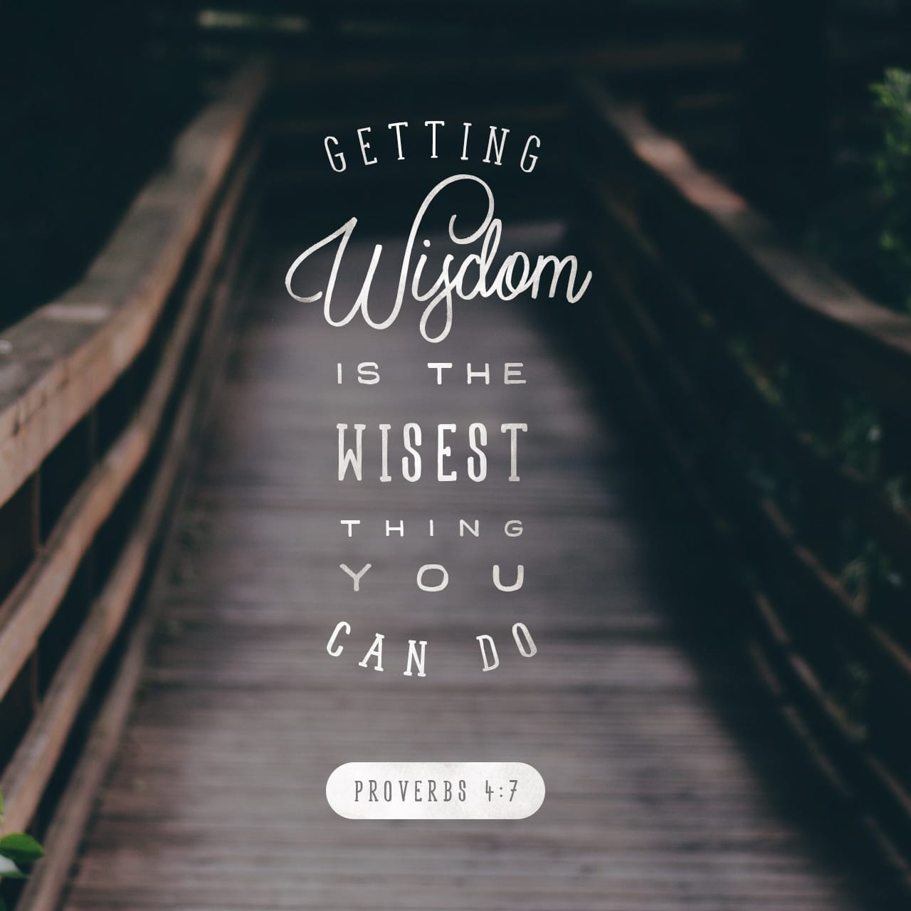 Proverbs 4:7 Wisdom is the principal thing; therefore get wisdom: and with all thy getting get understanding. | King James Version (KJV)