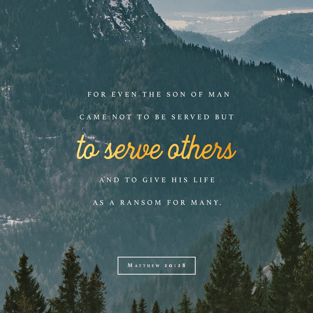 Matthew 20:28 Even as the Son of man came not to be ministered unto, but to minister, and to give his life a ransom for many. | King James Version (KJV)