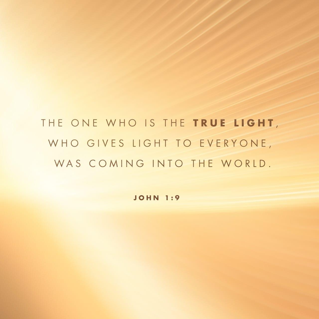 S.Juan 1:9 Aquella luz verdadera, que alumbra a todo hombre, venía a este mundo. | Biblia Reina Valera 1960 (RVR1960)
