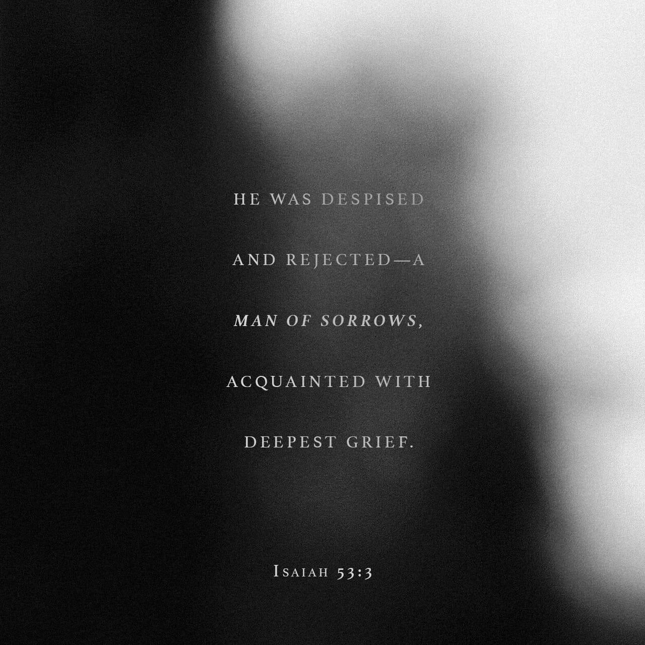 Isaías 53:3 Despreciado y desechado entre los hombres, varón de dolores, experimentado en quebranto; y como que escondimos de él el rostro, fue menospreciado, y no lo estimamos. | Biblia Reina Valera 1960 (RVR1960)