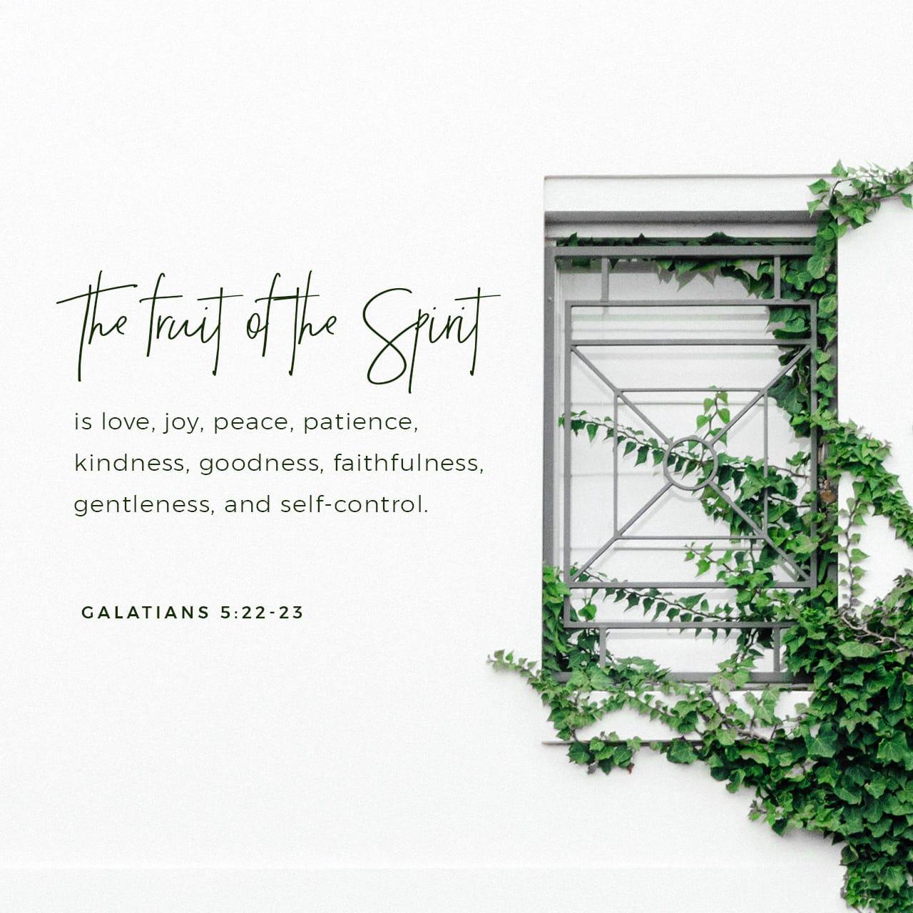 Galatians 5:22 But the fruit of the Spirit is love, joy, peace, forbearance, kindness, goodness, faithfulness | New International Version (NIV)
