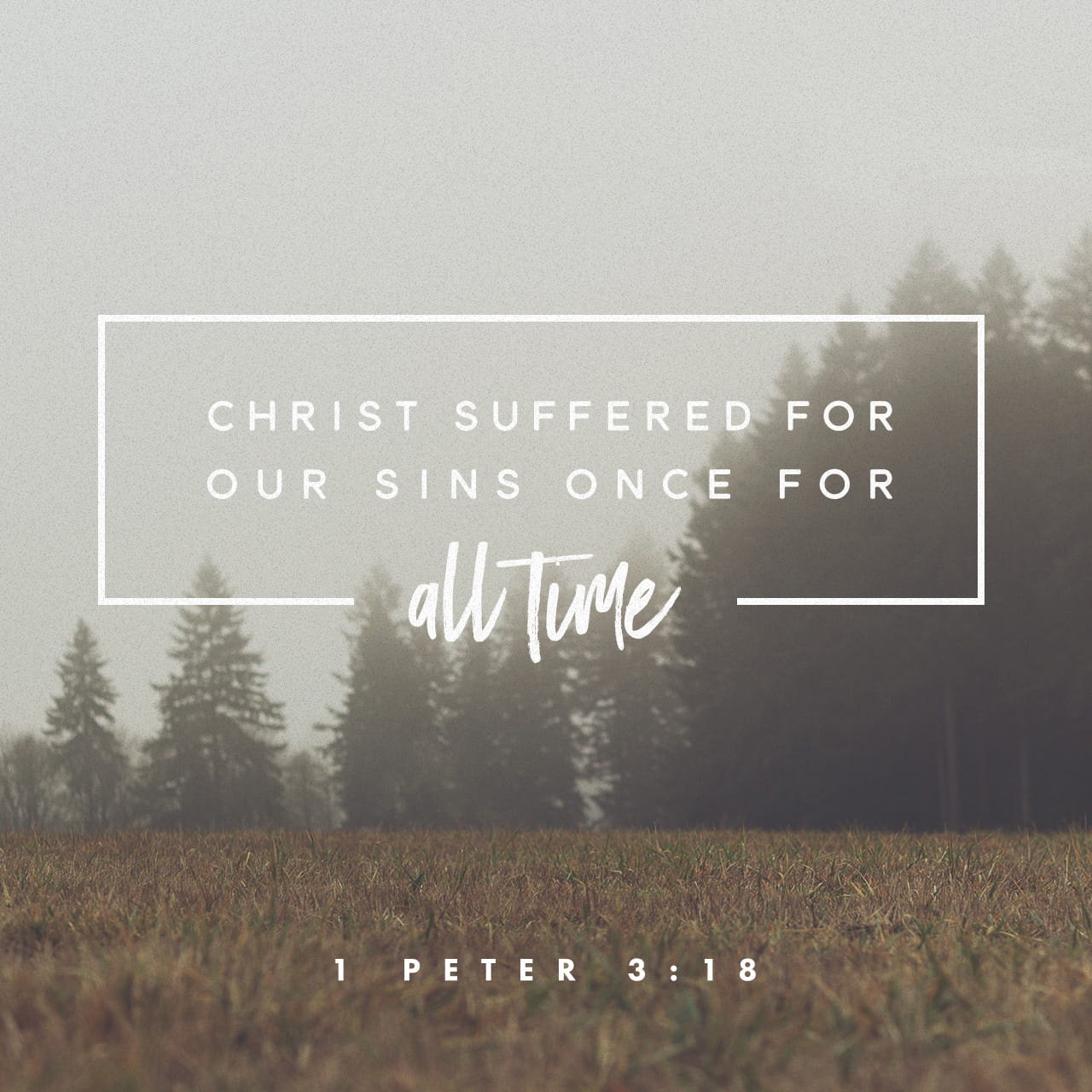 1 Peter 3:18 Christ suffered for our sins once for all time. He never sinned, but he died for sinners to bring you safely home to God. He suffered physical death, but he was raised to life in the Spirit. | New Living Translation (NLT)