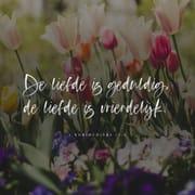 Versbild für 1. Korinther 13,4