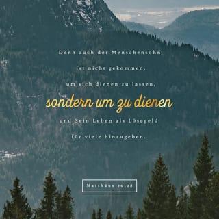Versbild für Matthäus 20,28