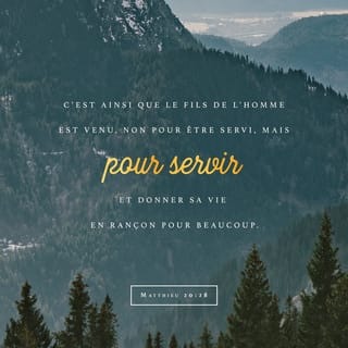 Matthieu 20:28 Verset Illustré
