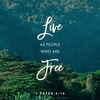 1 Peter 2:16 For you are free, yet you are God's slaves, so