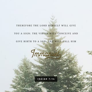 Verse Image for Isaiah 7:14