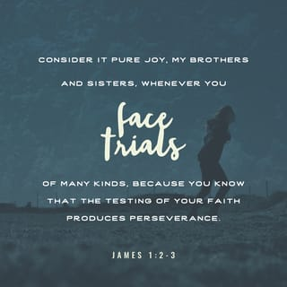 James 1:2-3 My brethren, count it all joy when ye fall into divers