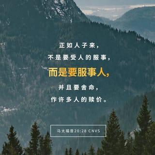 马太福音 20:28 经文图
