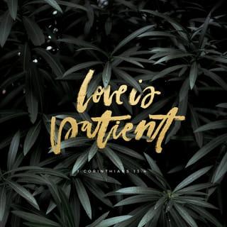 1 Corinthians 13:4-7 Love is patient and kind  Love is not jealous