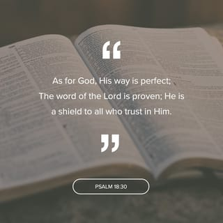 Psalms 18:30 As for God, His way is perfect