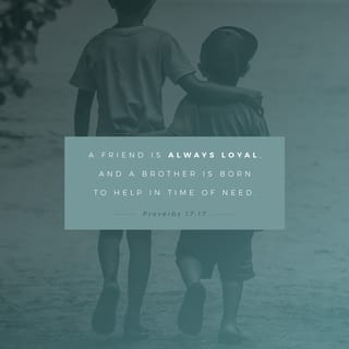Proverbs 17:17 Friends love through all kinds of weather, and