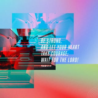 Psalms 27:14 Wait patiently for the LORD  Be brave and