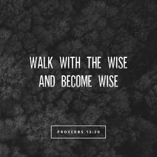 Proverbs 13:20 Walk with the wise and become wise