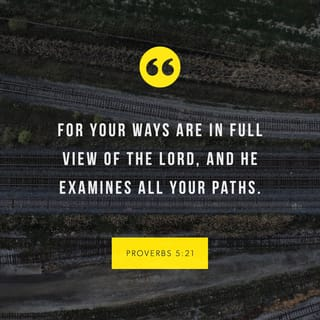PROVERBS 5:21 For the ways of man are directly before the