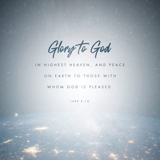 Luke 2:14 Glory to God in the highest, and on earth peace