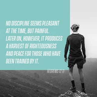 Hebrews 12:11 No discipline is enjoyable while it is happening—it's