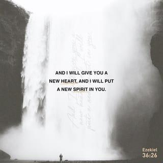 Image result for Ezekiel 36:26