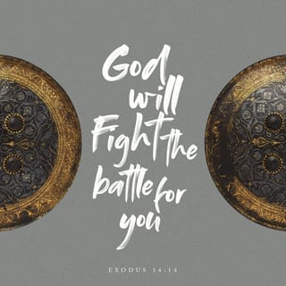 Exodus 14:14 GOD will fight the battle for you  And you? You keep