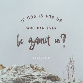 Romans 8:31 What then shall we say to these things? If God is for us