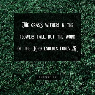 ... 1 Peter 1:24 NLT New Living Translation