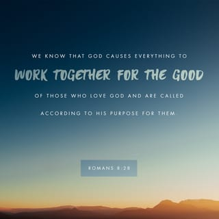 romans 8 28 and we know that all things work together for good to