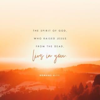 Romans 8:11 Verse Image