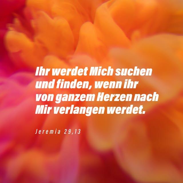 Vers Des Tages Sprüche 16 3 Delut The Bible App Bible Com
