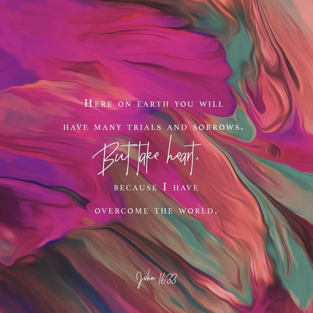 John 16:33 AMPC; I have told you these things, so that in Me you may have [perfect] peace and confidence. In the world you have tribulation and trials and distress and frustration; but be of good cheer [take courage; be confident, certain, undaunted]! For I have overcome the world. [I have deprived it of power to harm you and have conquered it for you.]